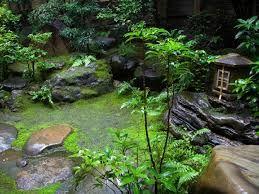 Jardin zen wallpaper