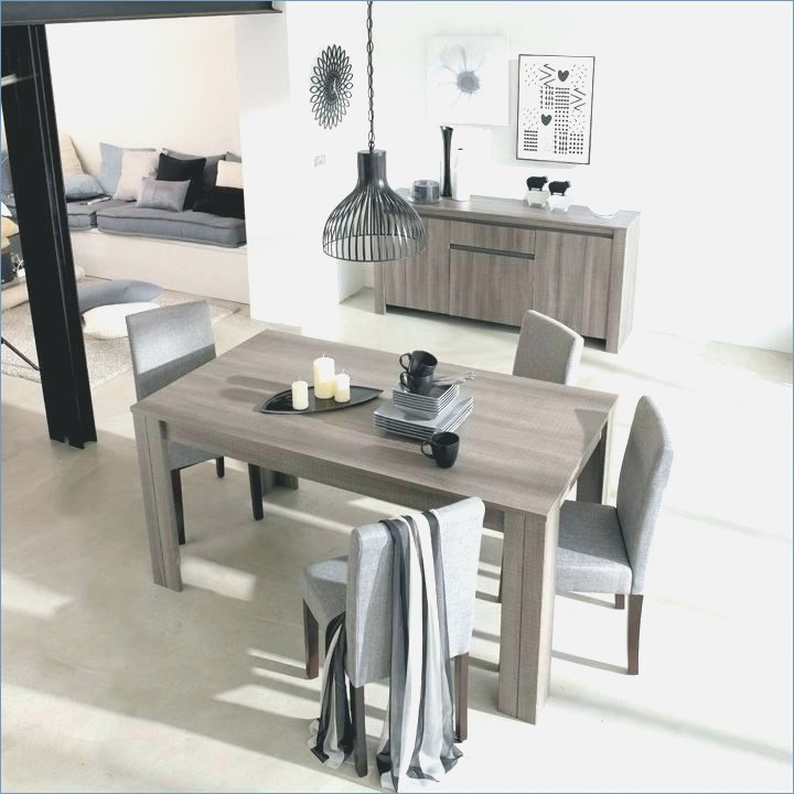 table salle a manger contemporaine roche bobois chaton chien donner. Black Bedroom Furniture Sets. Home Design Ideas